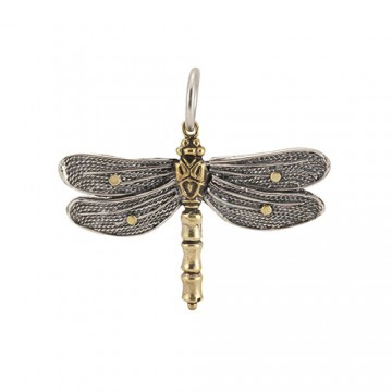 Transformative Dragonfly