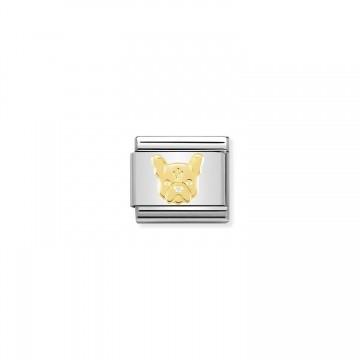 Französische Bulldogge - Gold